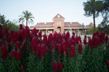 University of Arizona, Old Main Building with flowers