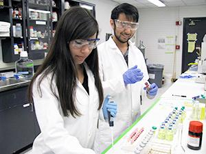 Camila Madeira and Warren Kadoya