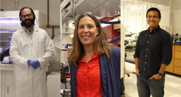 Collage of Adam Printz, Erin Ratcliff and Suchol Savagatrup in their labs.